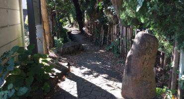 市内初の国の登録有形文化財の向かいにある「はけの小径」の竹垣が散々な状態なまま放置される小金井市